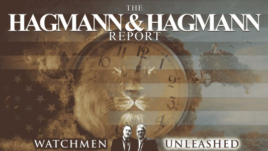 The Official Hagmann & Hagmann Report-Ted Broer